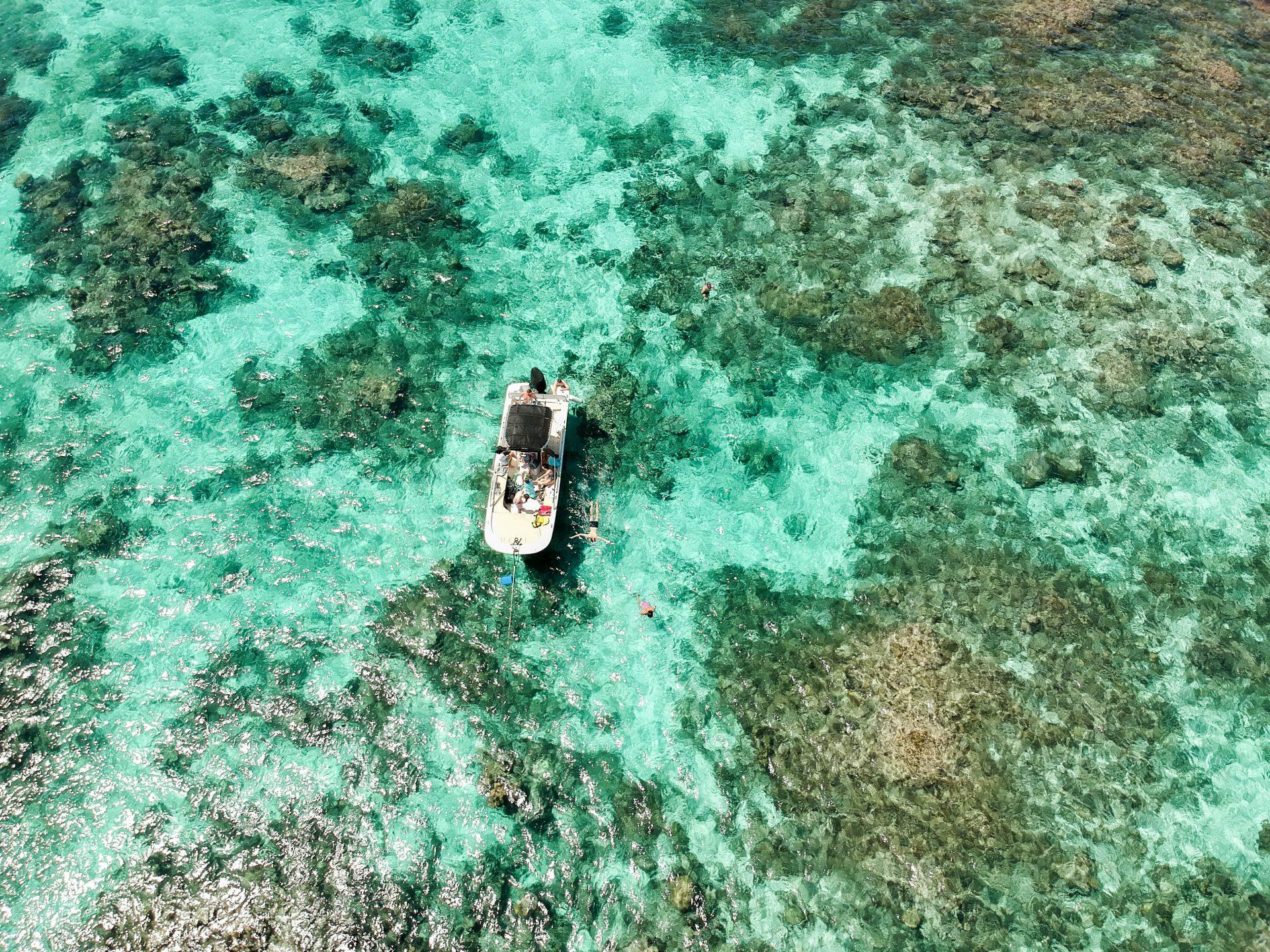 Barrière de corail au large de Sainte-Rose.